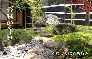 苔庭の作庭